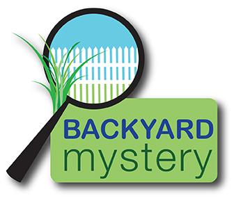 Backyard Mystery Logo